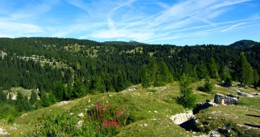 Asiago - On the Plateau, through nature and specialities