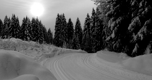 Asiago: Nordic skiing in Barenthal