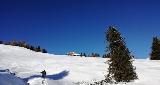 Brione in Snowshoes, a view on the Dolomites