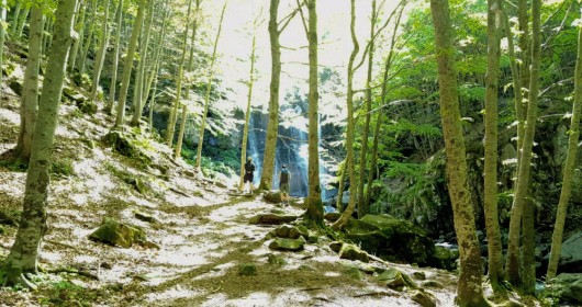 The Dardagna Falls: between enchanted forests and water leaps