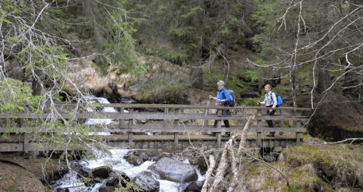 Jacopeo d'Anaunia Pilgrim Trail (Short Route) - Stage #2
