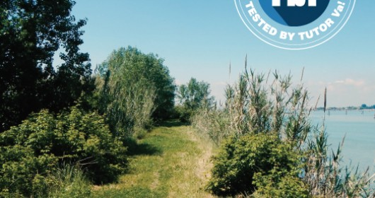 Discovering the Island of St.Erasmo, the Venice's kitchen-garden