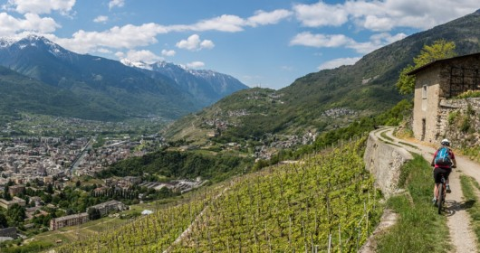 The Route of Terraced Vineyards: through the Valtellina' landscapes - Stage #1