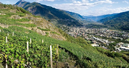 The Route of Terraced Vineyards: through the Valtellina' landscapes - A MULTI-STAGE JOURNEY