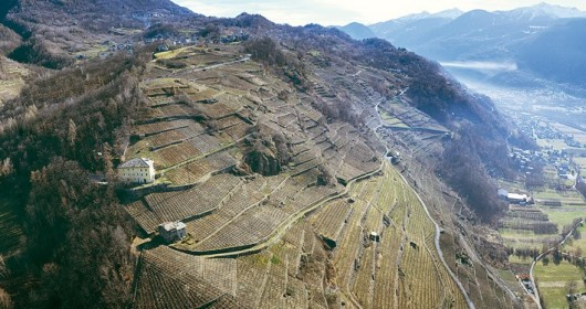 The Route of Terraced Vineyards: through the Valtellina' landscapes - Stage #4