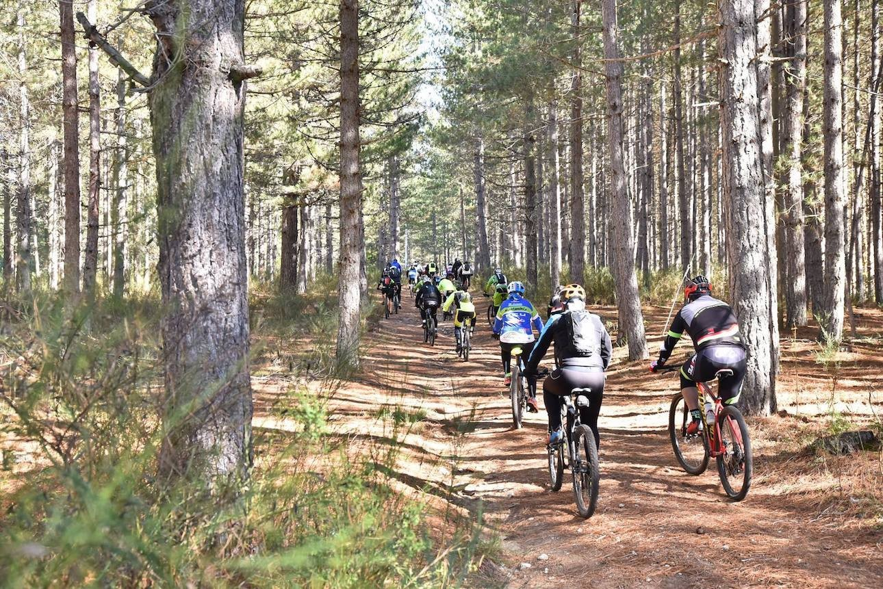 d87061d1a36 Although concentrated in a few kilometres, the route manages to have fans  experience the best of mountain biking and the beauty of the places  visited: ...