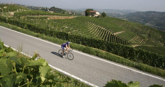 Cycling in the hills and valleys of the Langhe area