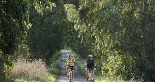 Tour in Tarquinia, along the old Etruscan paths