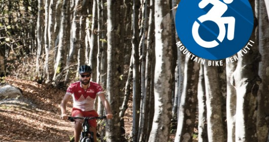The Campigna Forest on MTB
