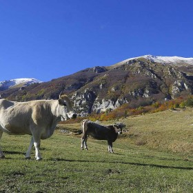 Cycling through Abruzzo: the Aventino Valley