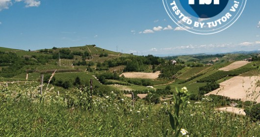 The hills of Roero: on MTB between villages and landscapes