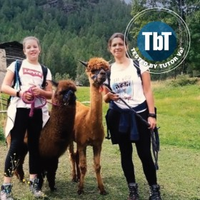 Hiking with Alpacas in Valmalenco