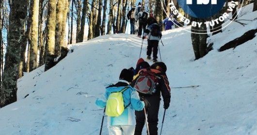 Snowshoes excursion on the top of Mount Amiata