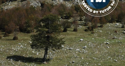 Anello Serra di Crispo: a walk through the magical places of Mount Pollino