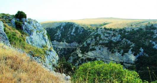 Bike Tour Bosco Quarto, in the heart of Gargano