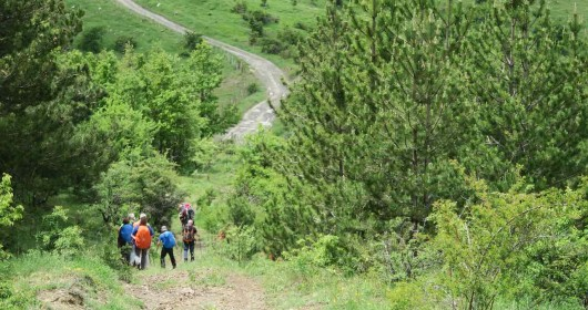 """Hiking in the Pollino Park """"Parallelo 39.56"""" - A MULTI-STAGE JOURNEY"""