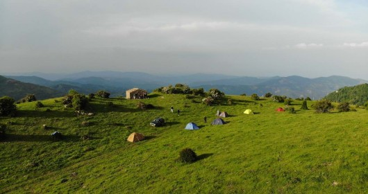 """Hiking in the Pollino Park """"Parallelo 39.56."""" - Stage #1"""