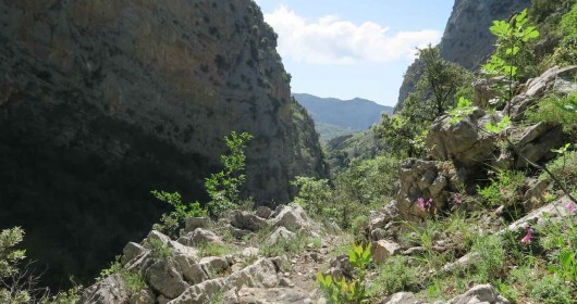 """Hiking in the Pollino Park """"Parallelo 39.56."""" - Stage #4"""